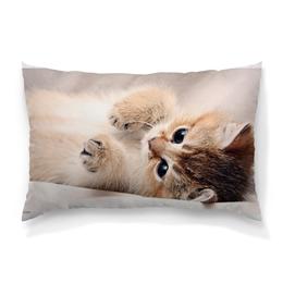 """Подушка 60х40 с полной запечаткой """"думка с котейкой"""" - котейка, купить подушку с принтом, купить подушку с рисунком, купить подушку-думку, картинки котят"""