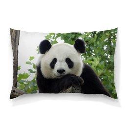 """Подушка 60х40 с полной запечаткой """"Панда"""" - панда, фотография, животное"""
