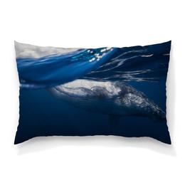 "Подушка 60х40 с полной запечаткой ""Whale"" - whale, кит, море, океан, горбатый кит"