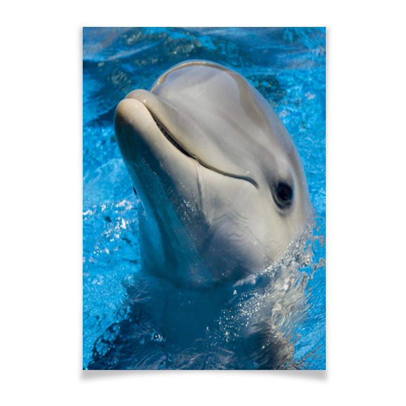 Плакат A3(29.7x42) Printio Дельфин 1