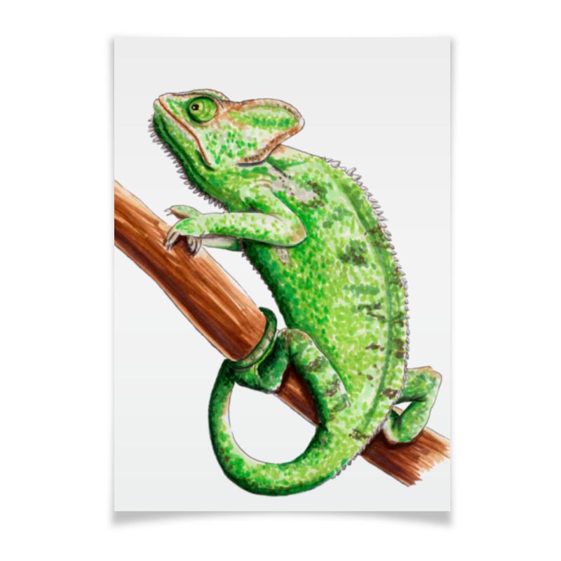 все цены на Плакат A3(29.7x42) Printio Зеленый хамелеон на ветке