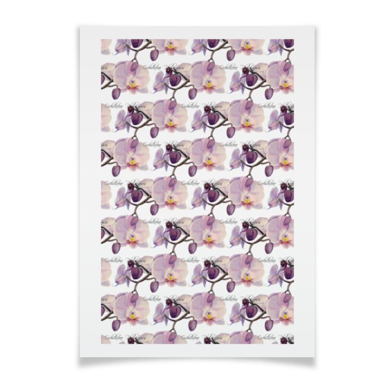 Плакат A3(29.7x42) Printio Ветка орхидеи