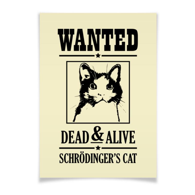 Плакат A3(29.7x42) Printio Кот шрёдингера кот шрёдингера