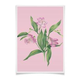 """Плакат A3(29.7x42) """"Цветы альстромерии 2"""" - цветы, pink, акварель, watercolor flowers, ботаническая иллюстрация"""