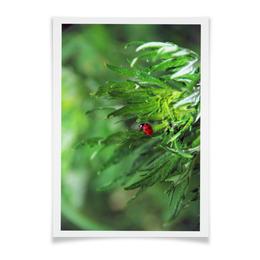"Плакат A3(29.7x42) ""Божья коровка"" - &интерьер, &цветы, &насекомые, &, &божья коровка"