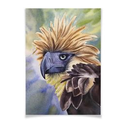 """Плакат A3(29.7x42) """"Филиппинский орел """" - животные, птица, фиолетовый, орел, иллюстрация"""