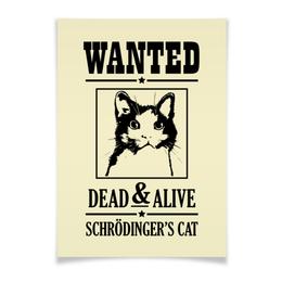 """Плакат A3(29.7x42) """"Кот Шрёдингера"""" - прикольные, коты, наука, кот шрёдингера"""