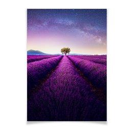 """Плакат A3(29.7x42) """"Без названия"""" - космос, небо, природа, звёзды, лаванда"""