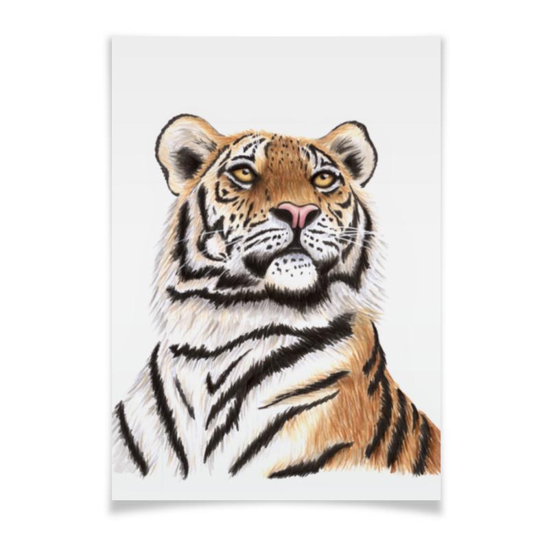 Плакат A2(42x59) Printio Взгляд тигра плакат a2 42x59 printio драко малфой