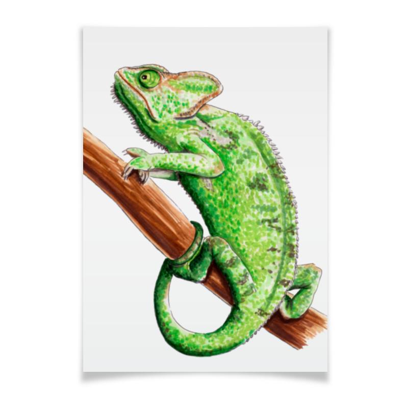 все цены на Плакат A2(42x59) Printio Зеленый хамелеон на ветке
