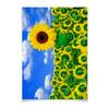 """Плакат A2(42x59) """"Подсолнух"""" - лето, цветок, небо, облака, подсолнух"""