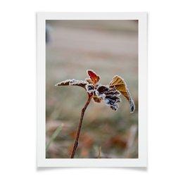 """Плакат A2(42x59) """"Иней на листьях"""" - зима, листья, осень, природа, фон"""