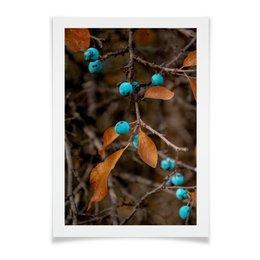"""Плакат A2(42x59) """"Оранжевая осень"""" - листья, осень, ягоды, синий, дерево"""