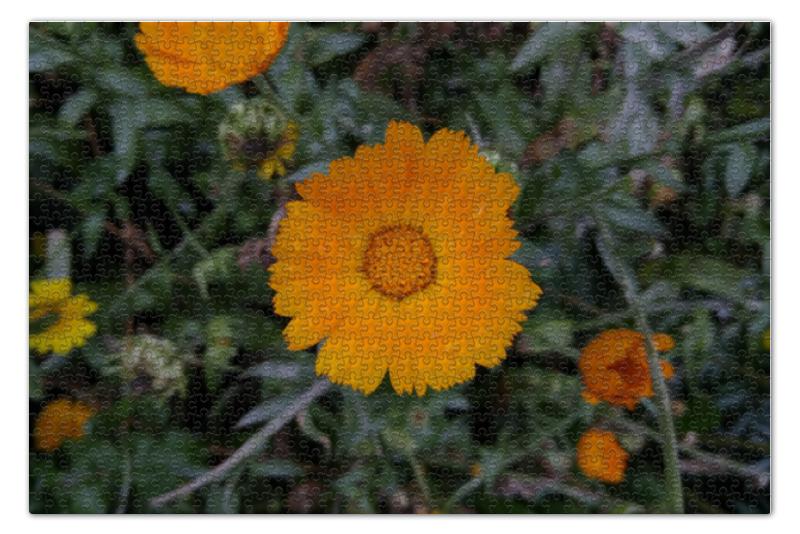 Пазл 73.5 x 48.8 (1000 элементов) Printio Летние цветы флексика коврик пазл цветы
