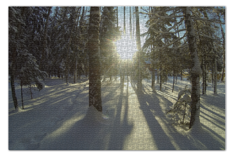 Printio Зимний лес пазл 73 5 x 48 8 1000 элементов printio ana