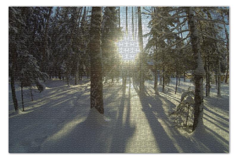 Пазл 73.5 x 48.8 (1000 элементов) Printio Зимний лес