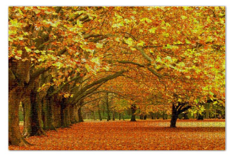 Пазл 73.5 x 48.8 (1000 элементов) Printio Осенний парк пазл 73 5 x 48 8 1000 элементов printio фруктовый сад весной
