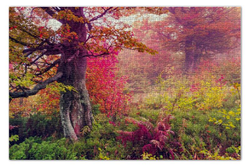 Пазл 73.5 x 48.8 (1000 элементов) Printio Осенний пейзаж пазл 73 5 x 48 8 1000 элементов printio скалистый пейзаж шишкин