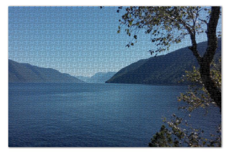 Пазл 73.5 x 48.8 (1000 элементов) Printio Удивительный алтай пазл ravensburger озеро эйб 1000 элементов