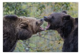 "Пазл 73.5 x 48.8 (1000 элементов) ""Медведи"" - медведи, рык, bears, roar"