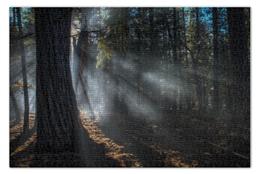 """Пазл 73.5 x 48.8 (1000 элементов) """"Лес  """" - деревья, рассвет, туман"""