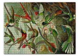 """Пазл 43.5 x 31.4 (408 элементов) """"Колибри (Trochilidae, Ernst Haeckel)"""" - птицы, картина, колибри, день матери, эрнст геккель"""