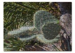 """Пазл 43.5 x 31.4 (408 элементов) """"Кактус"""" - растение, колючка, кактус, большой, ботанический сад"""