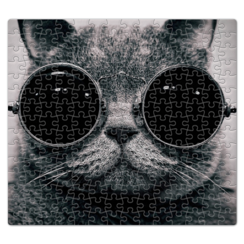 Пазл магнитный 27.4 x 30.4 (210 элементов) Printio Кот в очках наколенник магнитный здоровые суставы