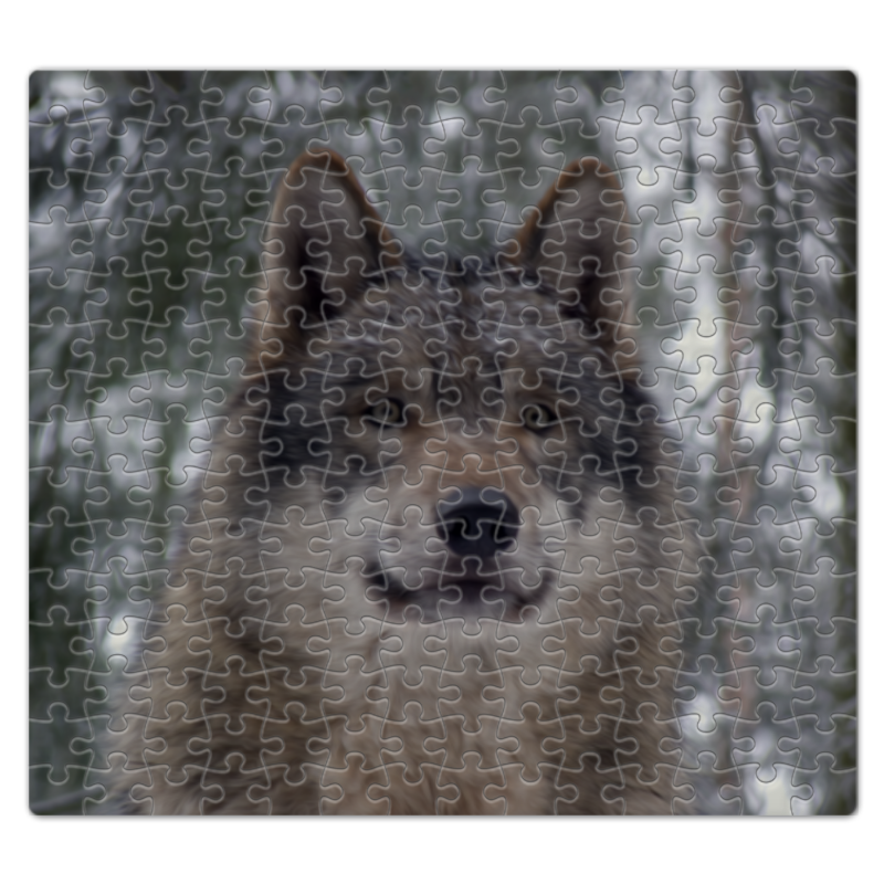 Пазл магнитный 27.4 x 30.4 (210 элементов) Printio Волк в лесу колычев в голодный волк или герои городского дна