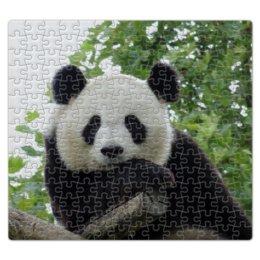 """Пазл магнитный 27.4 x 30.4 (210 элементов) """"Панда"""" - панда, фотография, животное"""