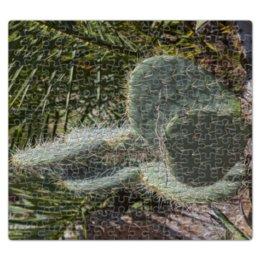 """Пазл магнитный 27.4 x 30.4 (210 элементов) """"Кактус"""" - растение, колючка, кактус, большой, ботанический сад"""