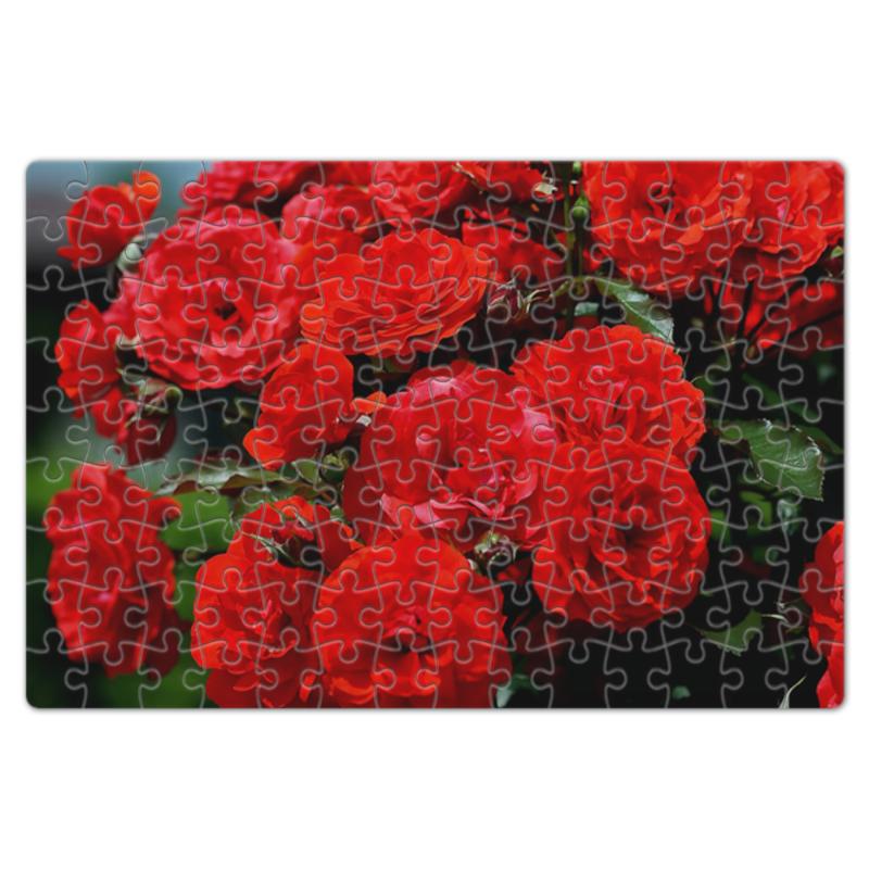 Пазл магнитный 18 x 27 (126 элементов) Printio Роза болгарии длинные висячие крупные серьги
