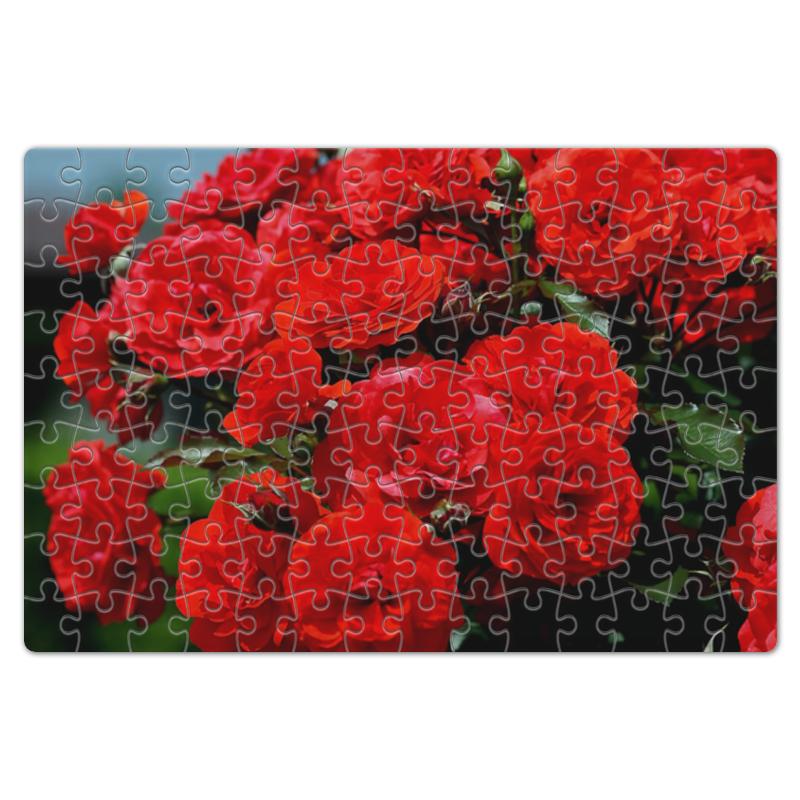Пазл магнитный 18 x 27 (126 элементов) Printio Роза болгарии