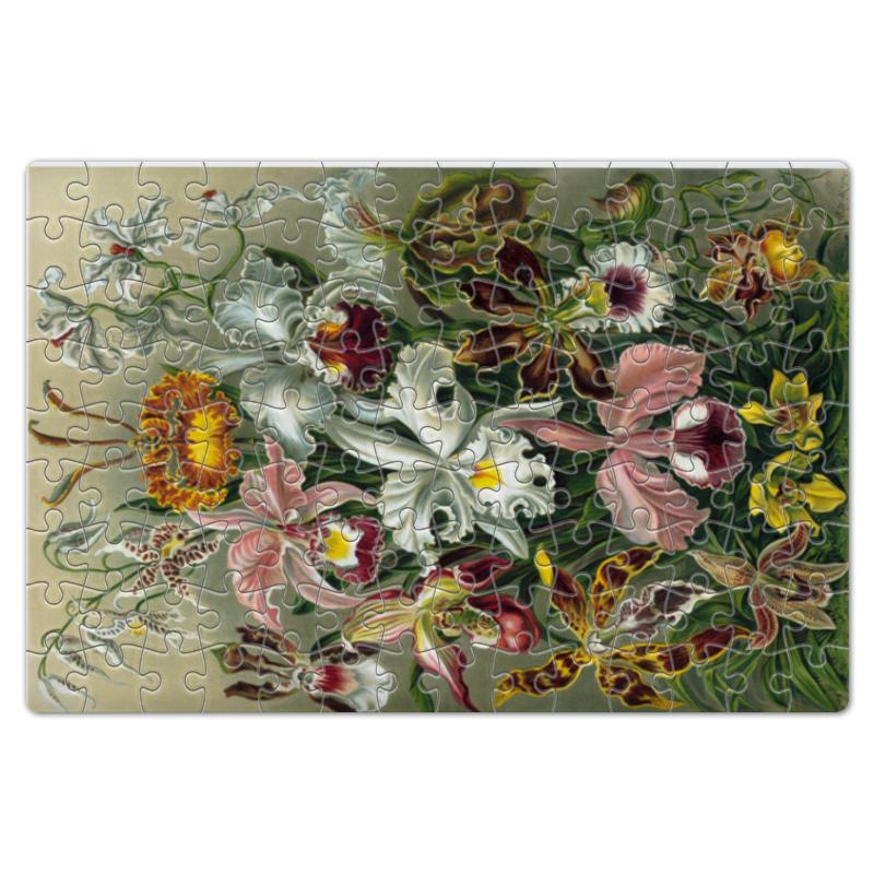 Пазл магнитный 18 x 27 (126 элементов) Printio Орхидеи (orchideae, ernst haeckel) мт 494 магнит лучшей теще