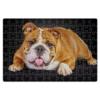"""Пазл магнитный 18 x 27 (126 элементов) """"Бульдог"""" - английский, собаки, бульдог"""