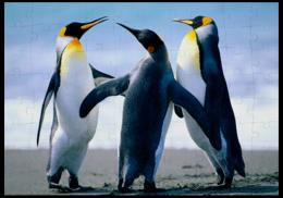 """Пазл магнитный 18 x 27 (126 элементов) """"пингвины"""""""