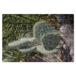 """Пазл магнитный 18 x 27 (126 элементов) """"Кактус"""" - растение, колючка, кактус, большой, ботанический сад"""