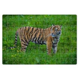 """Пазл магнитный 18 x 27 (126 элементов) """"Tiger"""" - хищник, tiger, тигр, полосатый тигр"""