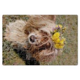 """Пазл магнитный 18 x 27 (126 элементов) """"Кокер Спаниель"""" - цветы, собака, желтый, зеленый, коричневый"""