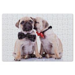 """Пазл магнитный 18 x 27 (126 элементов) """"Pugs """" - pug, щенки, мопс, pugs"""