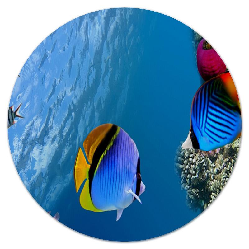 Коврик для мышки (круглый) Printio Подводный мир встраиваемый светодиодный светильник novotech sade 357364