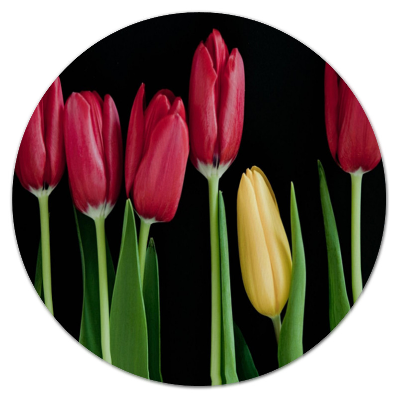 Коврик для мышки (круглый) Printio Тюльпаны