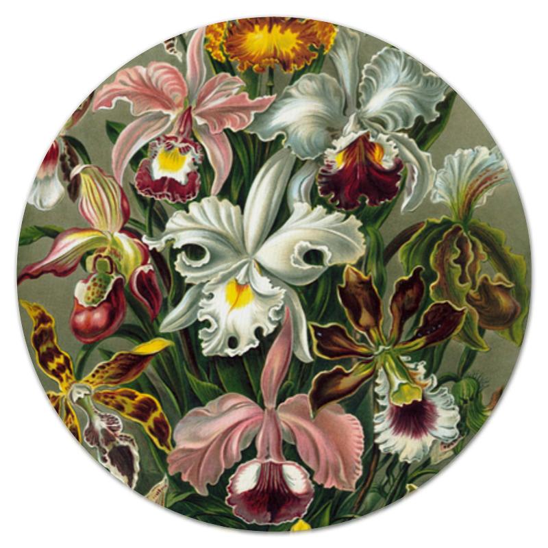 Коврик для мышки (круглый) Printio Орхидеи эрнста геккеля кружка цветная внутри printio любимой маме орхидеи эрнста геккеля