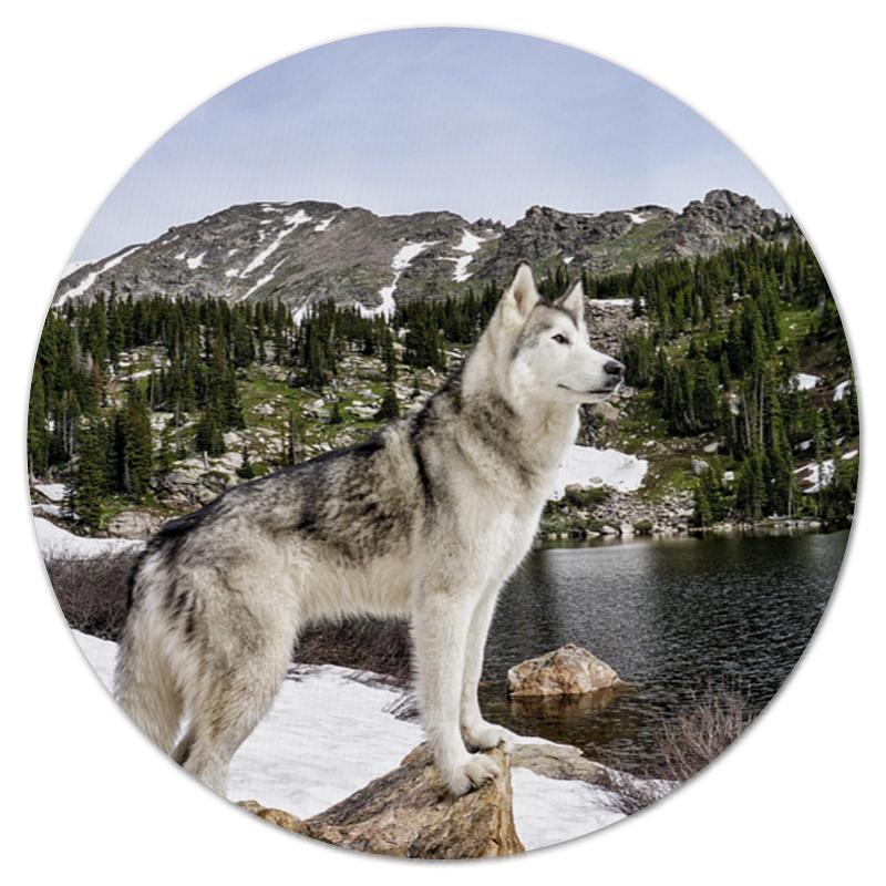 Коврик для мышки (круглый) Printio Волк в горах коврик для мышки printio река в горах
