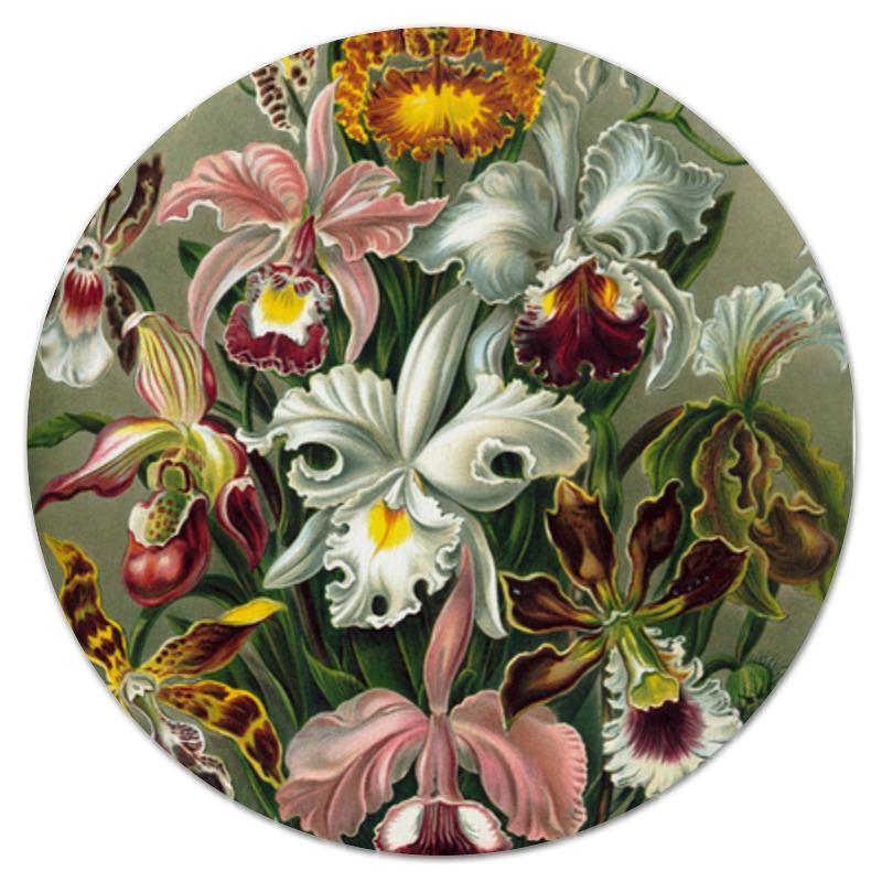 Коврик для мышки (круглый) Printio Орхидеи (orchideae, ernst haeckel) самые дешевые орхидеи в москве