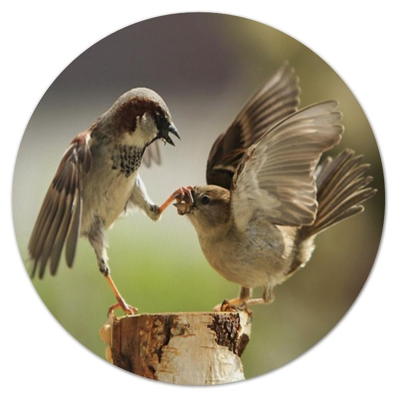 Коврик для мышки (круглый) Printio Забавные птички