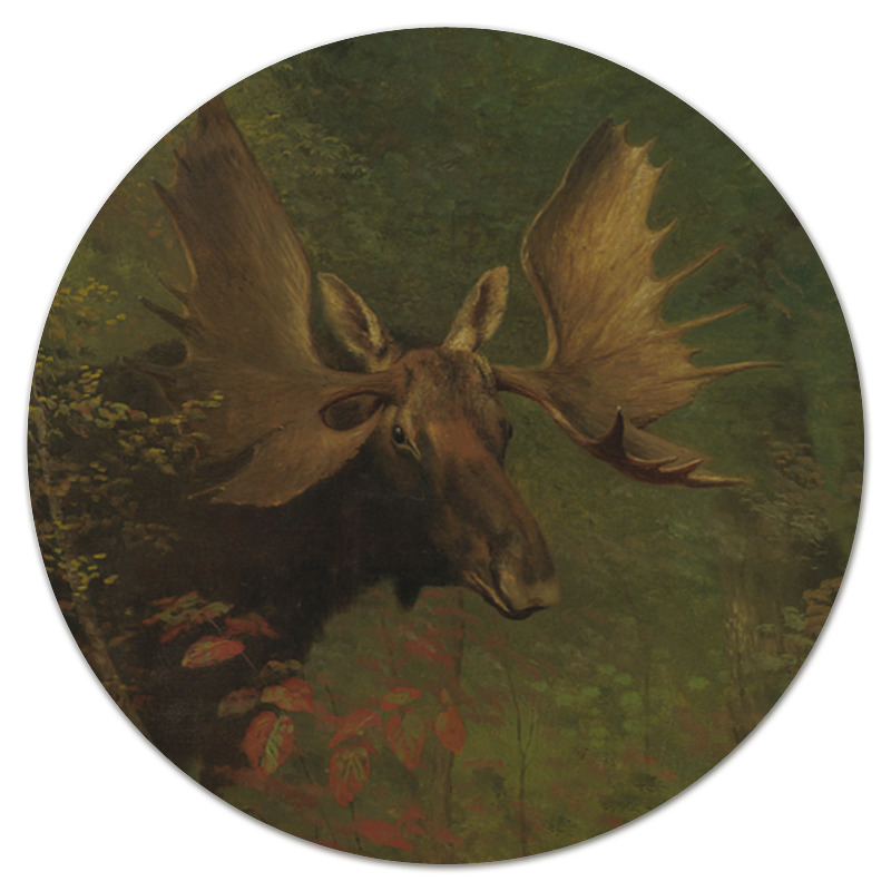 Printio Лось (study of a moose) (альберт бирштадт) цены онлайн