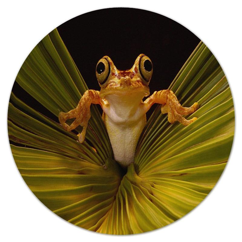 Коврик для мышки (круглый) Printio Лягушка сувенир мкт оберег для кошелька лягушка