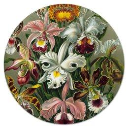 """Коврик для мышки (круглый) """"Орхидеи (Orchideae, Ernst Haeckel)"""" - картина, орхидея, день матери, красота форм в природе, эрнст геккель"""