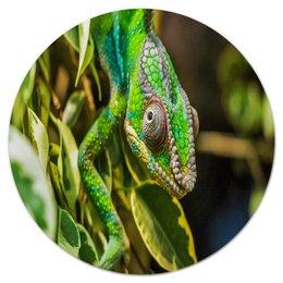 """Коврик для мышки (круглый) """"Хамелеон на дереве"""" - животные, зеленый, природа, ящерица, хамелеон"""